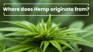 where does hemp originate from?