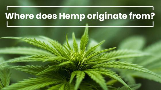 where does hemp originate from?